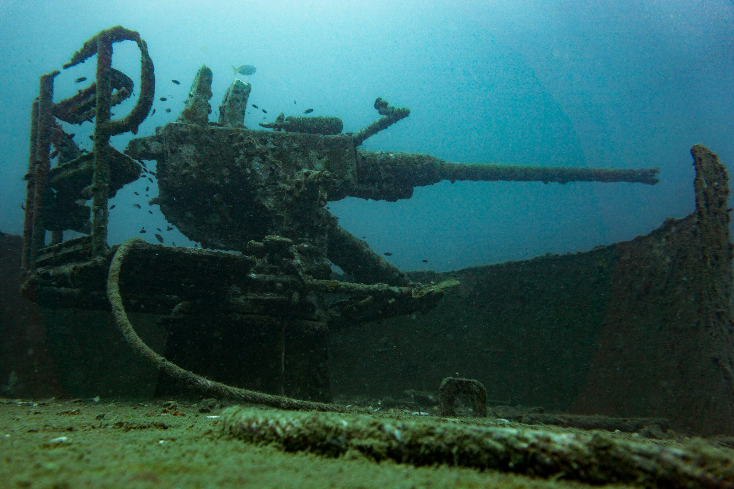 A Weapon in a Shipwreck Under Water - 7 Interesting Facts About The Ocean